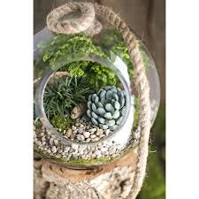 hanging terrarium diy kit thick glass terrarium container for
