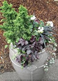 fall container gardens dandelion gardens olympia landscaping
