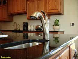 lovely moen kitchen faucet sprayer kitchenzo com