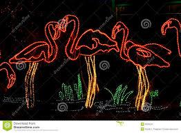 Zoo Light Portland by Flamingo Christmas Lights Christmas Lights Decoration