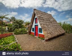 traditional house of madeira thatched roof in characteristic