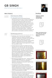 Sample Cfo Resume by Chief Executive Officer Resume Samples Visualcv Resume Samples