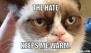 Grump Cat Meme Generator - grumpy cat meme bfr grumpy cat meme generator the hate keeps me