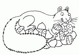 squirrel coloring coloring