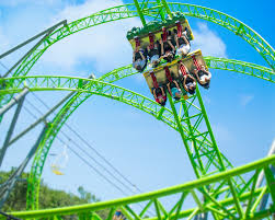 849 best love roller coasters images on pinterest rollers