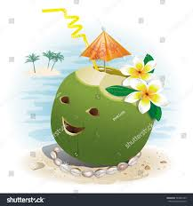vector illustration funny coconut carved smile stock vector