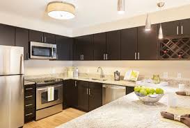 decorations remarkable dark cabinets light countertops design