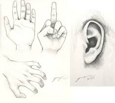 photos pencil sketches of hands drawing art gallery