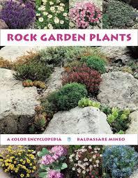 rock garden plants a color encyclopedia from timber press