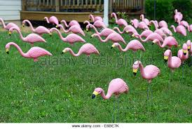 pink flamingo lawn ornaments stock photos pink flamingo lawn