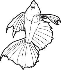 fish coloring page fish coloring sheet bass sheet new fish