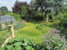 Wildlife Garden Ideas Wildlife Gardening Leicestershire Rutland Wildlife Trust