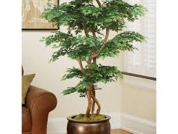 plant amazing artificial house plants amazing artificial tree