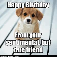 Cute Birthday Meme - 1428452308881 png