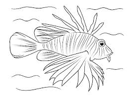 warm sea creature lionfish coloring pages batch coloring