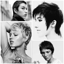the coolest pixie cuts stylenoted