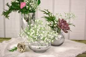 How To Make A Mercury Glass Vase Diy Mercury Glass The Day U0027s Dream Blog