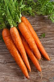Winter Root Vegetables List - buy stock photos of root vegetables colourbox