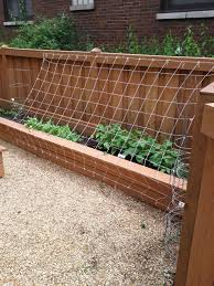 simple green bean trellis u2013 outdoor decorations