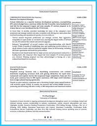 Strategy Resume Marvelous Things To Write Best Business Development Manager Resume