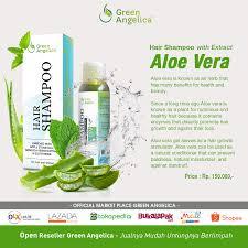 obat rambut penumbuh rambut botak mengatasi rambut rontok hair soo green angelica ini yang terbuat dari bahan herbal alami
