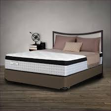 mattress box spring sheraton store and box spring for king bed
