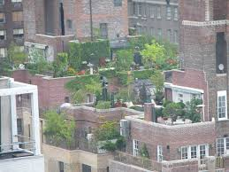 rooftop gardening raised plans gardens elevated plan landscaper
