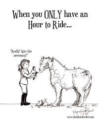 on horse nation u003e u003e the idea of order on a schedule ha the