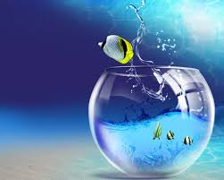 cool wallpapers for computer screen clipart full screen hd
