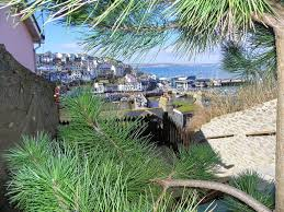 Brixham Holiday Cottages by Brixham Holiday Cottage Quirky Kippys Cottage Harbour Locaton Wi