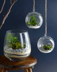 sand and stone terrarium project spotlight malaysia