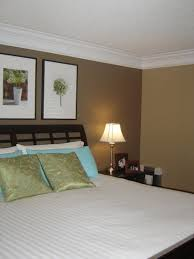 beautiful accent walls in bedroom photos rugoingmyway us