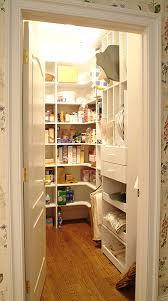 ideas for kitchen pantry kitchen pantry ideas digitalwalt