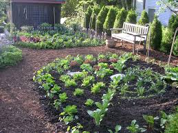 grand kitchen garden design vegetable garden design ideas image of