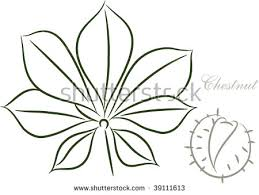 how to draw a chestnut leaf 28 images drawing of chestnut leaf