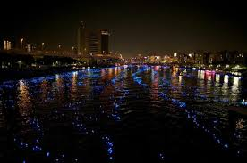 100 000 led spheres flowing a japanese river colossal