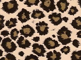 leopard wrapping paper safari animal print cheetah leopard spots gift