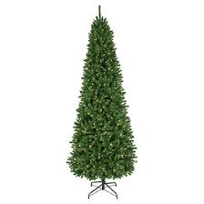 12 prelit pencil thunderbay tree with 1 100 clear ul