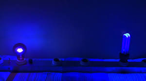 Black Lights In Bedroom Bedroom Black Light Bedroom Home Design Furniture Decorating