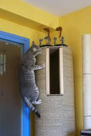 comment fabriquer un arbre a chat chambre fabriquer arbre a chat original bricolage pour nos