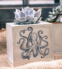octopus concrete planter home decor u0026 lighting mdc scoutmob