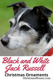 black and white jack russell christmas ornaments christmas mosaic
