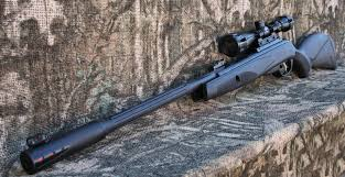 gamo maxima whisper fusion air rifle http airgunsforsaleusa