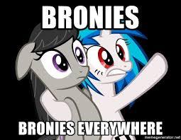 Bronies Meme - bronies bronies everywhere mlp everywhere meme generator
