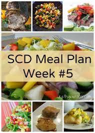 best 25 scd diet ideas on pinterest carbohydrate diet scd