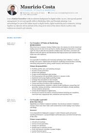 Sales And Marketing Resume Examples by Vp Sales U0026 Marketing Resume Samples Visualcv Resume Samples Database