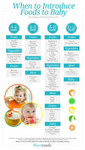 homemade baby food introducing solids schedule introducing baby