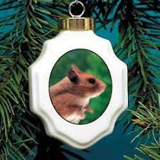ornament hamster home kitchen