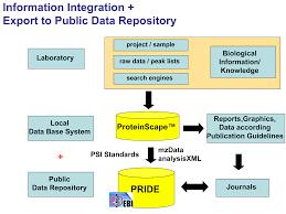 omicsonline full text managing proteomics data from