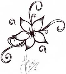 drawn flower simple pencil and in color drawn flower simple